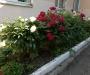 38-Letnyaya-shkola2