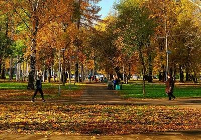 Кировчан просят высказать предложения по благоустройству парка имени Гагарина